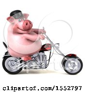 3d Chubby Business Pig Biker Riding A Chopper Motorcycle On A White Background