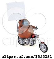 Clipart Of A 3d Orangutan Monkey Biker Riding A Chopper Motorcycle On A White Background Royalty Free Illustration