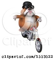 Clipart Of A 3d Bulldog Biker Riding A Chopper Motorcycle On A White Background Royalty Free Illustration