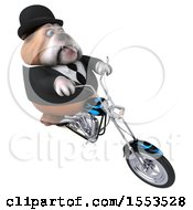 Clipart Of A 3d Gentleman Or Business Bulldog Biker Riding A Chopper Motorcycle On A White Background Royalty Free Illustration