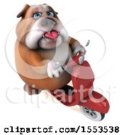Clipart Of A 3d Bulldog Riding A Scooter On A White Background Royalty Free Illustration