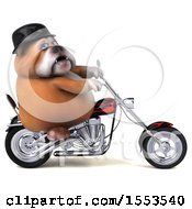 Clipart Of A 3d Bulldog Biker Riding A Chopper Motorcycle On A White Background Royalty Free Illustration by Julos