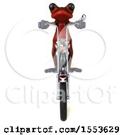 Clipart Of A 3d Red Frog Biker Riding A Chopper Motorcycle On A White Background Royalty Free Illustration
