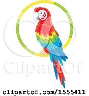 Scarlet Macaw Perched On A Ring