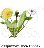 Clipart Of A Breeze Blowing Wishey Blow Seeds From A Dandelion Plant Royalty Free Vector Illustration by dero