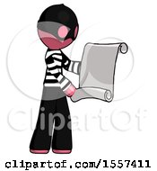 Pink Thief Man Holding Blueprints Or Scroll