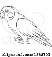 Clipart Of A Lineart Lovebird Royalty Free Vector Illustration