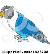 Clipart Of A Blue Lovebird Royalty Free Vector Illustration