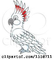 Clipart Of A Cockatoo Royalty Free Vector Illustration by Alex Bannykh