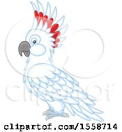 Clipart Of A Cockatoo Royalty Free Vector Illustration