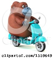 Clipart Of A 3d Orangutan Monkey Riding A Scooter On A White Background Royalty Free Illustration by Julos