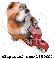 April 19th, 2018: Clipart Of A 3d Bulldog Riding A Scooter On A White Background Royalty Free Illustration by Julos