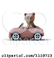 3d Brown Bear Driving A Convertible On A White Background