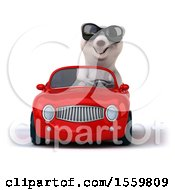 3d Polar Bear Driving A Convertible On A White Background