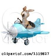 3d Kangaroo Aviator Pilot Flying An Airplane On A White Background