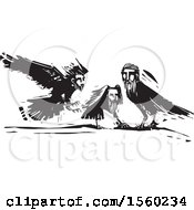 Clipart Of Black And White Crows With Heads Of Men Royalty Free Vector Illustration by xunantunich