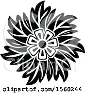 Poster, Art Print Of Black And White Floral Damask Relief Design Element