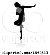 Silhouetted Female Dancer With A Reflection Or Shadow On A White Background