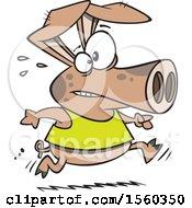Cartoon Fit Pig Running