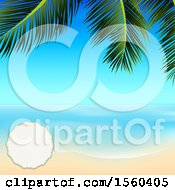 Blank Frame On A Palm Branch Over A Sunny Ocean And Sandy Beach