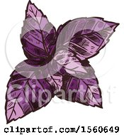 Clipart Of Sketched Red Basil Royalty Free Vector Illustration