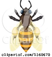 Clipart Of A Honey Bee Royalty Free Vector Illustration