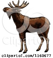 Clipart Of A Sketched Moose Royalty Free Vector Illustration by Vector Tradition SM