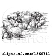 Clipart Of A Sketch Of A Herd Of Elephants Royalty Free Vector Illustration