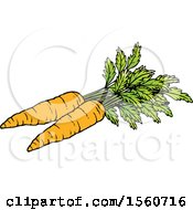 Clipart Of Carrots Royalty Free Vector Illustration