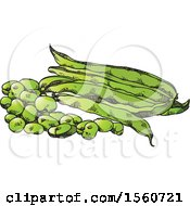 Clipart Of Beans And Pods Royalty Free Vector Illustration