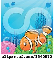 Clipart Of A Clownfish Underwater On An Anemone Royalty Free Vector Illustration