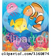 Clipart Of A Group Of Marine Fish Royalty Free Vector Illustration