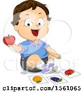White Toddler Boy Identifying An Apple