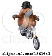3d Chubby Brown Horse Biker Riding A Chopper Motorcycle On A White Background