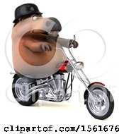 Clipart Of A 3d Chubby Brown Horse Biker Riding A Chopper Motorcycle On A White Background Royalty Free Illustration by Julos