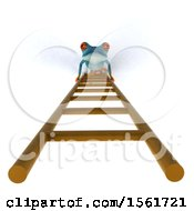 3d Blue Frog Looking Up A Ladder On A White Background