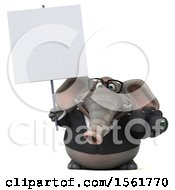 3d Business Elephant Holding A Camera On A White Background