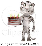 Clipart Of A 3d White Tiger Holding A Birthday Cake On A White Background Royalty Free Vector Illustration