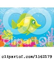 Clipart Of A Butterfly Fish Over A Reef Royalty Free Vector Illustration