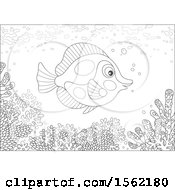 Clipart Of A Lineart Butterfly Fish Over A Reef Royalty Free Vector Illustration