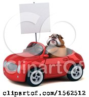 Clipart Of A 3d Bulldog Driving A Convertible On A White Background Royalty Free Illustration by Julos