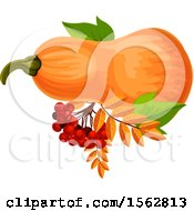 Clipart Of A Seasonal Fall Autumn Design With A Squash Royalty Free Vector Illustration