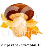 Clipart Of A Seasonal Fall Autumn Design With A Mushroom And Leaves Royalty Free Vector Illustration