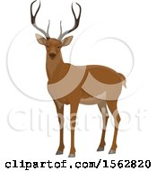 Clipart Of A Buck Deer Royalty Free Vector Illustration by Vector Tradition SM