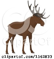 Clipart Of A Moose Royalty Free Vector Illustration by Vector Tradition SM