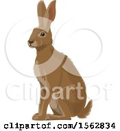 Clipart Of An Alert Brown Bunny Rabbit Royalty Free Vector Illustration