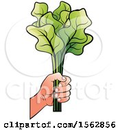 Clipart Of A Hand Holding Radish Leaves Royalty Free Vector Illustration