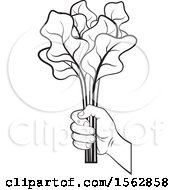 Clipart Of A Black And White Hand Holding Radish Leaves Royalty Free Vector Illustration