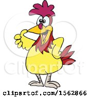 Cartoon Chicken Giving A Thumb Up
