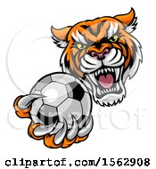 Clipart Of A Vicious Tiger Sports Mascot Grabbing A Soccer Ball Royalty Free Vector Illustration